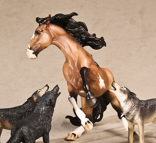 Horse and wolves by photos for fun.