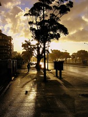 After the storm (Oliver Hardt) Tags: africa street shadow sun rain silhouette clouds south wolken capetown sonne schatten hardt regen stello strase stellohardt