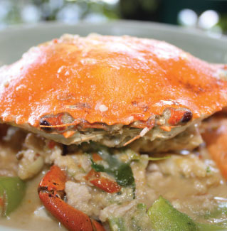 Giant Crab in Coconut Sauce, Janhom