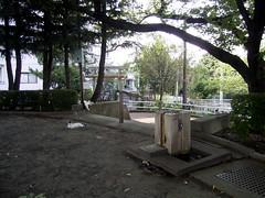 水神社、土手の傍らの湿った場所。
