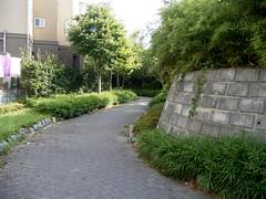 水神社の小径、水路跡か2。