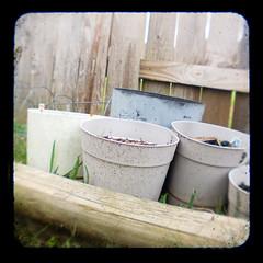 Flower Pots TTV
