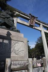 (eyawlk60) Tags: kyoto shrine torii   tenmangu