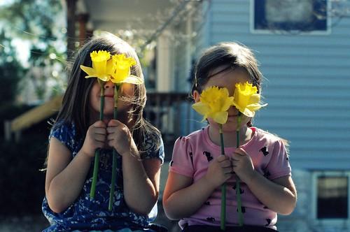 spring manifesto