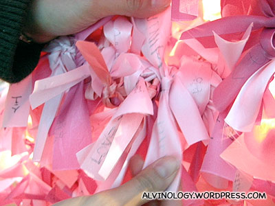 Tying the ribbon to the wishing tree