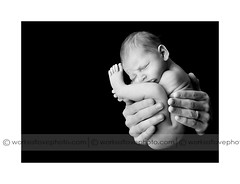 folded (drmolly1) Tags: baby newborn nikond700 worksoflovephotography