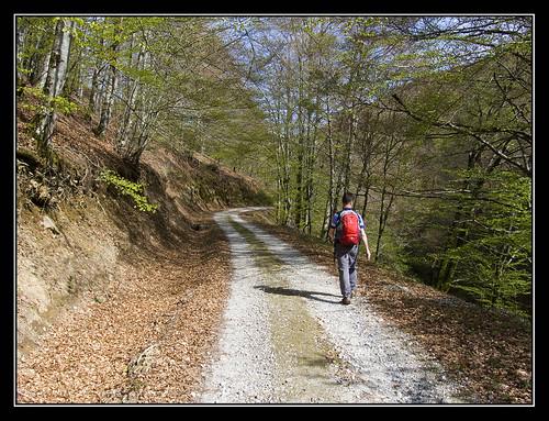 Camino del Barranco de Zuriain