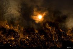 Burning (StarlightHope) Tags: sunset holiday fire sundown smoke flames dramatic celebration bonfire tradition valborg allys solnedgång eld bål walpurgisnight sistaapril valborgsmässoafton dramatisk valborgsmässofirande valborgsmässobål