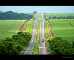E continua a viagem..... (Dircinha -) Tags: travel brazil canon estrada carros viagem rvore automveis rodovia dircinha gettyvacation2010 transitoyahoo