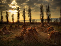 Szigliget, Balaton (zedspics) Tags: sunset hungary z balaton hdr magyarország plattensee szigliget 0802 05802 fujifilmfinepixs9600 zedzolika zedspics zedspics™ z™
