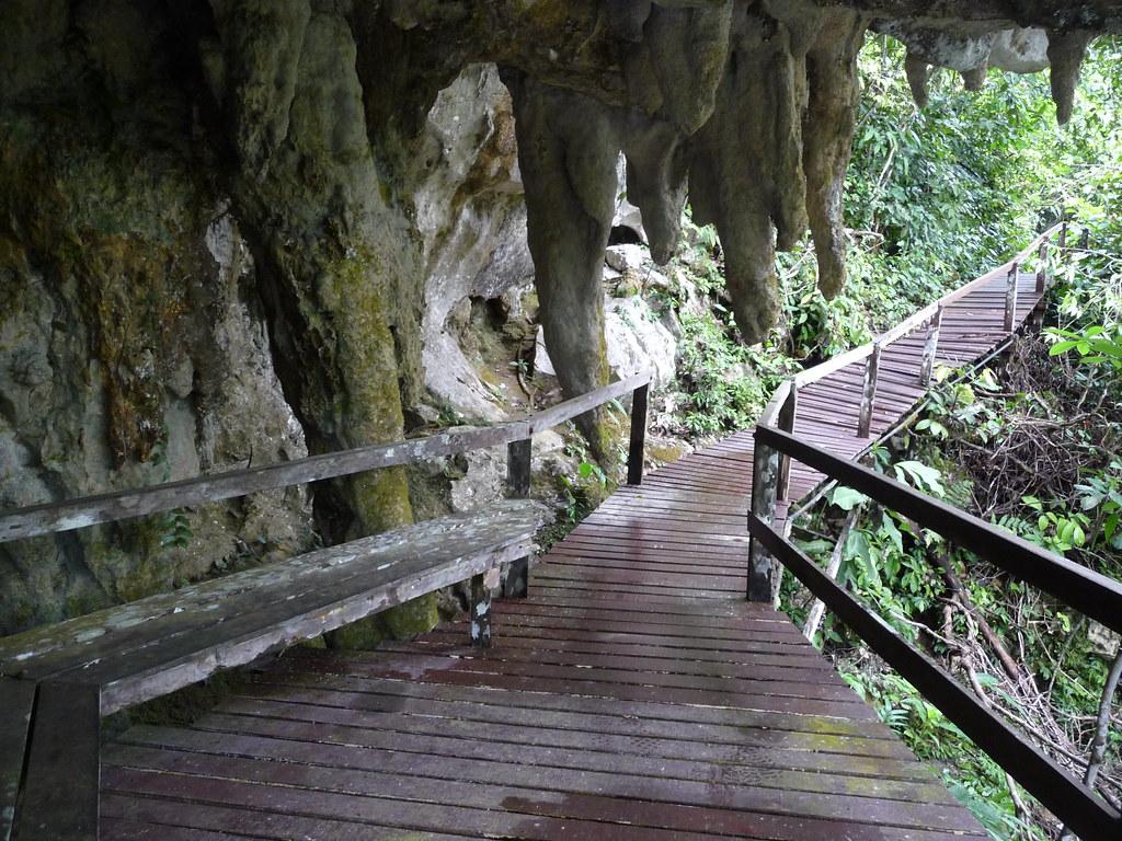 Mulu-Winds Cave (64)