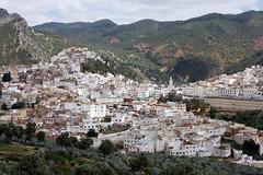 Over Idriss (MykReeve) Tags: road building buildings town hill hills morocco roads moulayidriss المملكةالمغربية المغرب مولايإدريس geo:lat=34060588 geo:lon=5527341