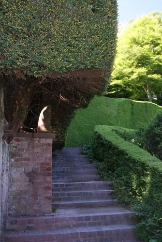 powis_gardens (2)