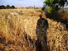 L'ombra del (figlio del) padrone (trqmgd) Tags: italy italia ombra campagna giugno salento puglia salentu apulien pouilles nociglia nucija sfinite