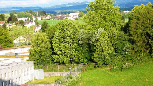 View Southeast from Solothurn hospital
