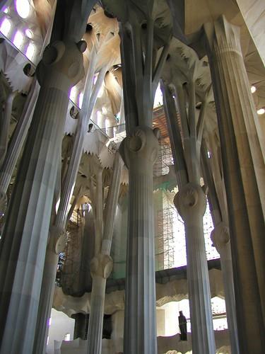 Barcelona HY batch 1 0509 082