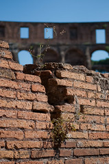 Colosseum 4 (www.chriskench.photography) Tags: rome roma nikon colosseum nikkor d90 kenchie