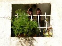 Say Cheese! (Annie in Beziers) Tags: plant france window bars humour windowsill streetscenes putyourfeetup bziers asparagusfern cheeseyfeet annieinbziers