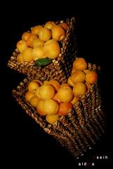 Apricot (3αsєуαƬ¬αŁĐм3•••) Tags: مشمش
