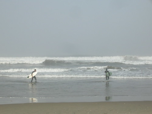 SURFERS ARE BACK (3)