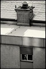 Coffee and cigarette (Saso Lovsin) Tags: chimney bw coffee girl smoking ljubljana bp sneg bratovevapl saolovin sasolovsin