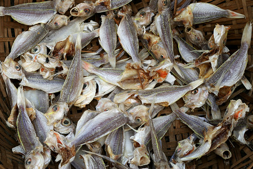 Dried fish in China. / Nisa + Ulli Maier