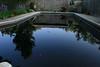 2 of 3 the black lagoon (gemini angel's art and dolls) Tags: swim swimmingpool mango maintenance amaryllis guava ewwwww yuk blythedoll summeriscoming handmadedress fromgina miema iamnotswimminginthat