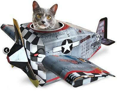 cat play house aviao