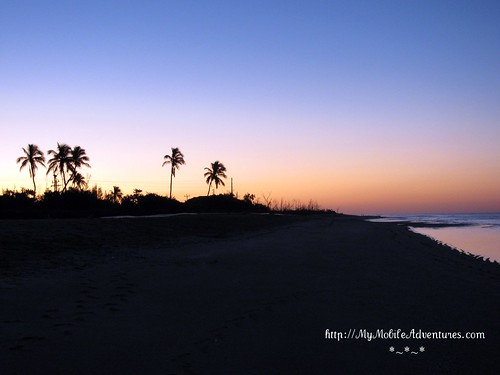 IMG_0089-Blind-Pass-sunrise-palms-Sanibel-Island