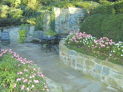 Steps and Walkways | Masonry Division | Johnsons Landscaping 32 (Johnsons Landscaping Service, Inc) Tags: landscaping service johnson landscape design montgomery county bethesda chevy chase takoma park kensington silver spring potomac rockville olney northwest dc nw maryland md washington gardening stone work masonry walkways patios plantings paver driveways retaining walls segmental plan stairs lighting exterior scenic outdoors water features arbors trellises decks fences carpentry ponds johnsonslandscapingservice incresidentialandcommerciallandscapedesignservicesinwashington chevychase takomapark silverspring montgomerycountyotherservicesgardendesign landscapelighting exteriorlighting drainage stonewalls retainingwalls yarddesigns stepsandwalkways timberwallspatiosstepsandwalkwayspondsgardendesignstonewallsexteriorlightingpruningandtrimmingpaversflagstonewalkwayflagstonepatiodrainageretainingwallsyarddesignslandscapingservicejohnsonlandscapinglandscapedesign