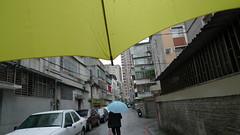 P1010293 () Tags: street new morning winter people umbrella mom year chinese rainny