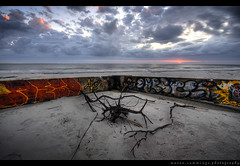 Crosseyed and Painless (Mason Cummings) Tags: ocean abandoned beach clouds sunrise concrete nikon southcarolina foundation graffitti twigs follybeach hdr cpl talkingheads planetearth d300 photomatix sigma1020 crosseyedandpainless
