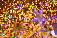 HBW! (Pacifist) Tags: winter japan star colorful bokeh illumination shizuoka gotemba  tokinosumika 20082009 tamron28300vc tamronaf28300mmf3563xrdivcldasphericalif