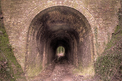 Great Culand Tunnel (Nexus - Richard Wilkinson) Tags: brick grass chalk kent tunnel pit archway northdowns quarry greatculand