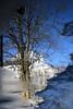 Oberstorf - Reflektionen in einer Pfütze - Puddle Reflection (Jörgenshaus) Tags: schnee winter snow reflection water bayern deutschland wasser alpen reflektion oberstdorf pfogold friendlychallenges thechallengefactory