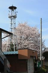 三橋の火の見櫓(さいたま市西区)