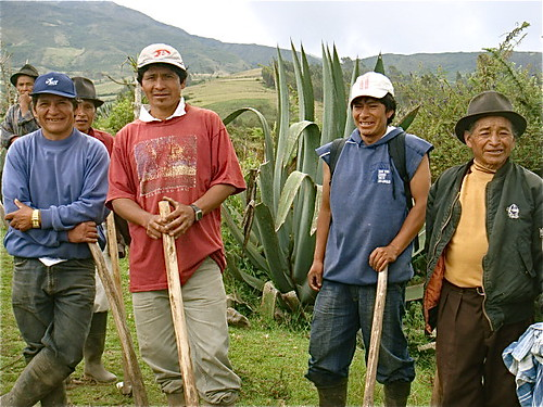 Ecuador-wills