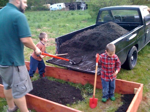 Filling up the garden box