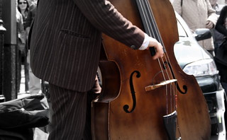 Double-bass player