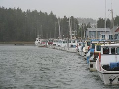 Fishing Boats along Gulf Shore Parkway