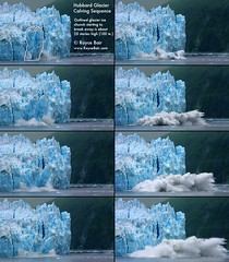 "Hubbard Glacier Calving Sequence (IronRodArt - Royce Bair (""Star Shooter"")) Tags: park blue cold fall ice water field alaska melting aqua break pacific crash turquoise dramatic conservation environmental snap off glacier cap collapse environment fjord melt iceberg icy splash sequence pressure warming seward kenai global calving alaskan hubbard topple tidewater calve disenchantment oceanbay"