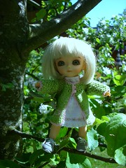 Tindra in the apeltree (Lillie-Anne) Tags: green yellow knitted tindra apel littleanne lati mammabilderdockor