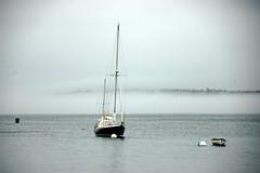 Ship in Seal Harbor