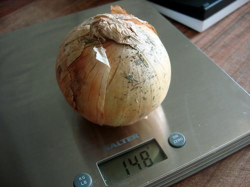 Zwiebel auf der Waage