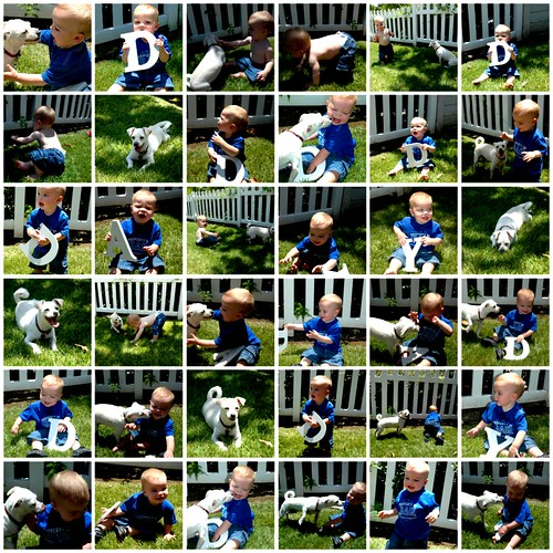Father's Day Collage 2006