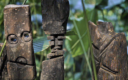Carvings in the Rainforest Biodome