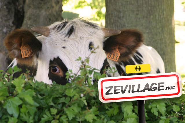 Zevillage : le réseau des télétravailleurs