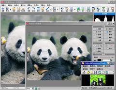 台灣黑熊及中國熊貓合成過程 http://www.flickr.com/photos/anchime/3209181850/