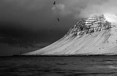 (eyben) Tags: winter blackandwhite bw mountain snow cold iceland sland snfellsnes snjr vetur naturesfinest eyben kuldi breiafjrur svarthvtt tamron1750 40d bjarnarhafnarfjall kolgrafafjrur helgafellssveit eythorbenediktsson eyrbenediktsson