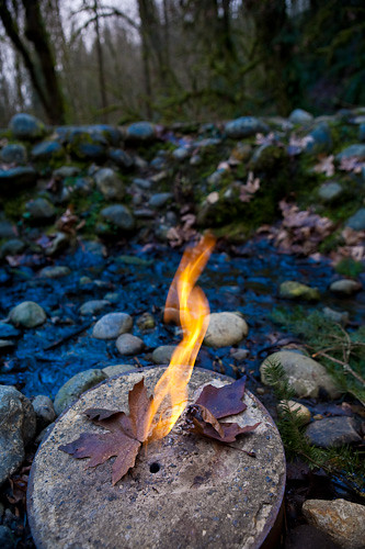 Flaming Geyser State Park